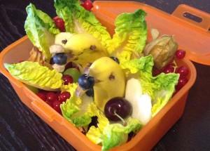 Bec_Lunchbox_Delfine_(c)veggie-kids.de