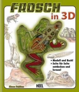 Frosch Anatomie für Kinder_(c) veggie-kids.de