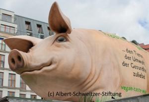 Grunzmobil (c) Albert-Schweitzer-Stiftung